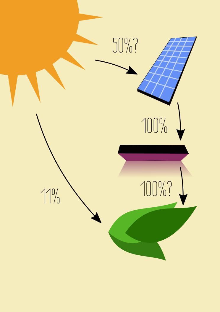 Kasvit voisivat yhteyttää paremmin, jos auringon valo muunnetaan ensin sähköksi